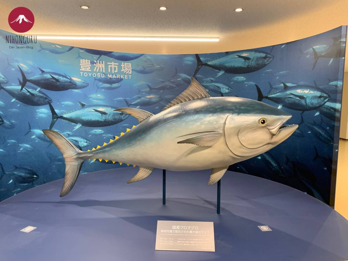 Fisch Thunfisch groß Statue