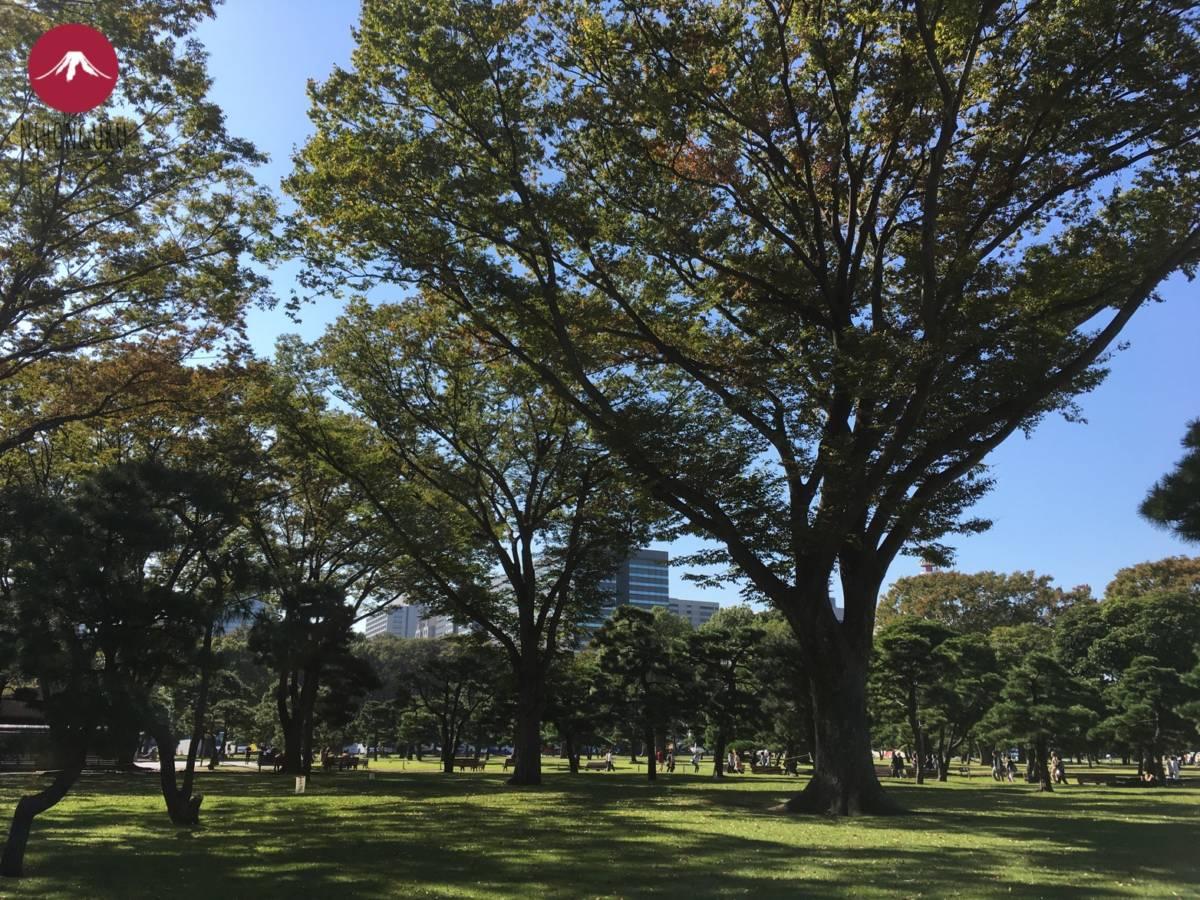 Bäume Park Tokio Kaiserpalast